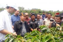 Koperasi Petani Barokah Kerinci ekspor perdana 15,6 ton kopi ke Belgia