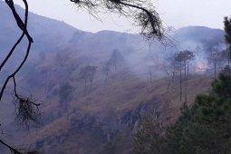 Hutan Gunung Andong di Magelang terbakar, pemadaman dilakukan oleh tim