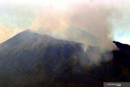 Pemprov Jatim minta bantuan BNPB padamkan kebakaran hutan Gunung Arjuno