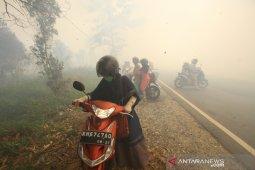 Kabut Asap Karhutla Ganggu Aktivitas Warga