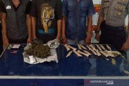 Polisi Aceh Utara tangkap tiga pengedar ganja, berikut barang buktinya
