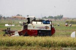 Pemanfaatan teknologi pertanian
