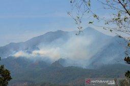 Hutan Pegunungan Malabar Kembali Terbakar