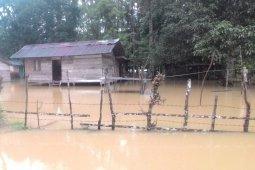 Sebelas desa di Aceh Barat terendam banjir