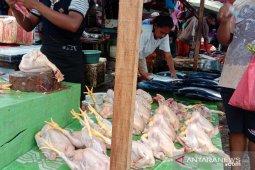 Harga daging ayam beku pasokan Surabaya  di Ambon normal