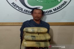 Polisi amankan 5 Kg ganja dari BHL Dinas Kebersihan