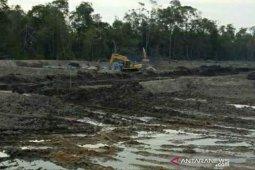 Pemkab Bangka Selatan diminta hentikan pembangunan tambak udang di Merbau