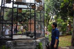 Artis  Lucky Hakim apresiasi konservasi burung di Ancol