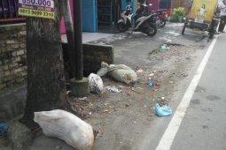 Astaga, kali ini bangkai babi dibuang di jalanan Kota Medan