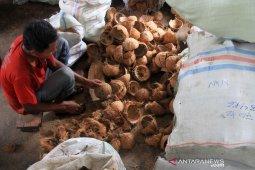 Pemanfaatan limbah batok kelapa