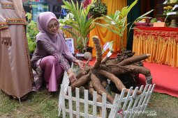 Aceh Agro Expo2019