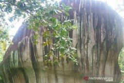 Pemkot Singkawang akan kembangkan objek wisata Batu Belimbing