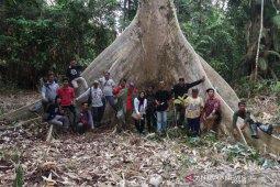 Songsong IKN, Tanjung Soke Bersiap Menjadi Kampung Wisata
