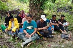 Pawang usir harimau yang mangsa ternak di Aceh Utara