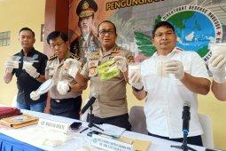 Polisi tunggu informasi penyidik ledakan granat di Monas