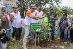 Gerakan Penanaman Pohon di Lahan Kritis