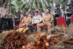 Harga TBS meroket, Polda Riau bentuk tim antisipasi pencurian sawit