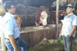 Dosen Universitas Brawijaya ajari peternak olah limbah industri tempe jadi biogas