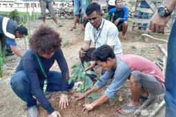 Dua ratus ribuan bibit pohon ditanam di hutan lindung Lahat