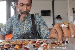 30 tahun nafkahi keluarga dari kemilau Cempaka Madu