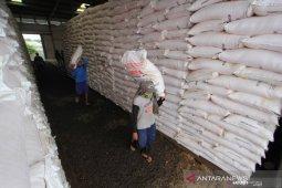Aceh Tenggara kekurangan alokasi pupuk urea subsidi