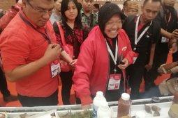 Dipuji Ketum PDIP Megawati, Risma ucapkan terima kasih