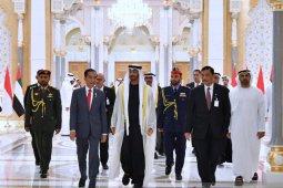 Putra Mahkota UEA ingin pulau di Indonesia, Luhut tawarkan Tanah Mori