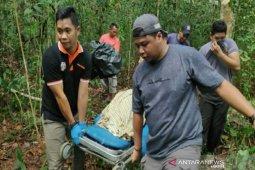 Mayat wanita ditemukan di kebun karet