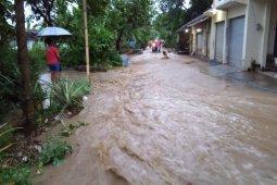 Banjir genangi rumah dan lahan pertanian di Jember