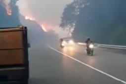 10 hektare lahan kosong terbakar hebat di Aceh Jaya