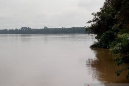 Kota Jambi siaga hadapi banjir luapan Sungai Batanghari