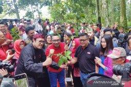 """PDIP canangkan gerakan rehabilitasi hutan melalui """"Leuweung Pajajaran"""""""
