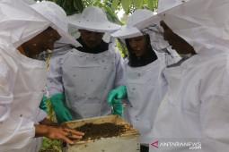 PT LAJ latih warga sekitar TNBT budidaya lebah madu