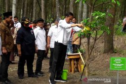 Jokowi lepas elang Jawa di Gunung Merapi