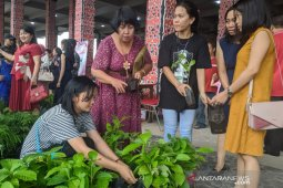 "Suvenir 1.500 bibit pohon ""ludes"" pada pernikahan Trisepteo-Maria di Pontianak"