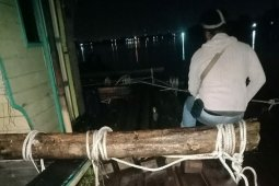 Polair Polda Kalbar tetapkan pemilik ratusan batang kayu ilegal sebagai tersangka