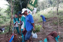Pemkot Kediri gandeng TNI dan Perhutani tanam pohon cegah tanah longsor