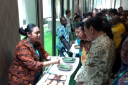 Government introduces Papua's business potential to 45 investors