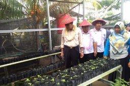 Pemkab Bangka Tengah dorong petani menuju sentra pertanian organik