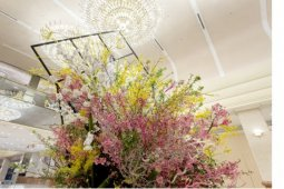 Keio Plaza Hotel Tokyo celebrates the arrival of spring and cherry blossoms with beautiful flower arrangements, delectable meals and digital sakura art