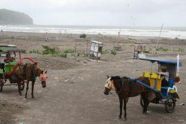 Sepekan 72.565 wisatawan kunjungi Pantai Parangtritis