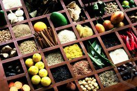 Obat herbal tradisional Dayak makin diminati