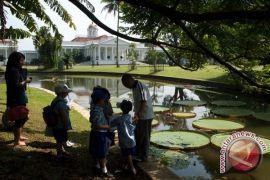 Kebun Raya Bogor akan sediakan WiFi untuk publik