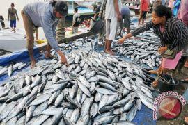 Jepang minati produk ikan Sulut