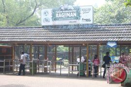 Kebun Binatang Ragunan tutup bagi pengunjung pada hari pertama Idul Fitri
