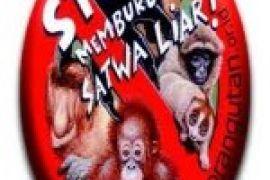 Profauna: Jalan Poros Justru Tingkatkan Perburuan Satwa Dilindungi