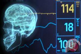 Cod Liver Oil bantu perkembangan otak anak