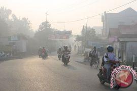 4 helikopter padamkan 5 hektare lahan terbakar di Kalsel
