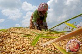Kaltim targetkan 200 kampung iklim