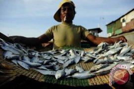 Pengrajin ikan asin Bengkulu kesulitan bahan baku